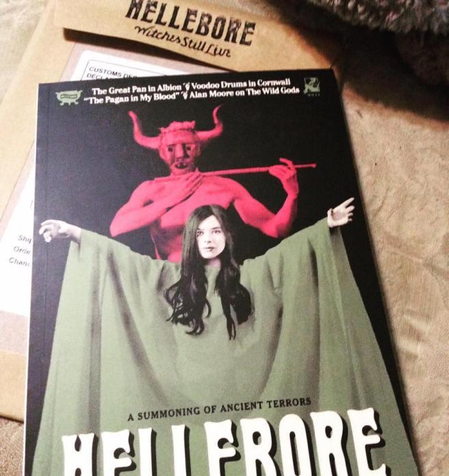 hellebore 1