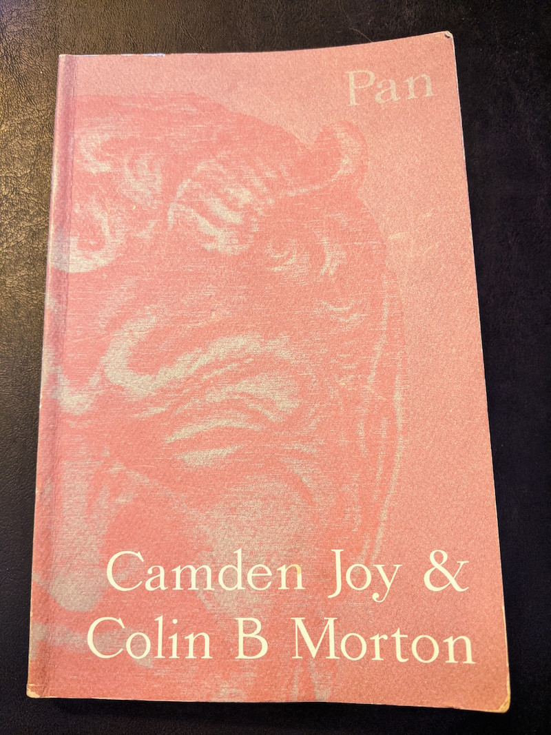 Pan Joy Morton Cover